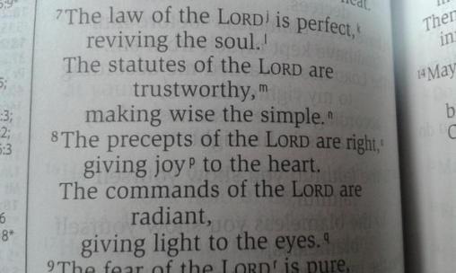 Psalm 19 7-8